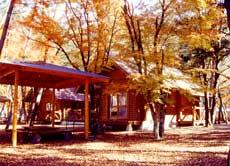 梅ヶ島温泉 貸別荘 金山温泉 ログハウスの外観