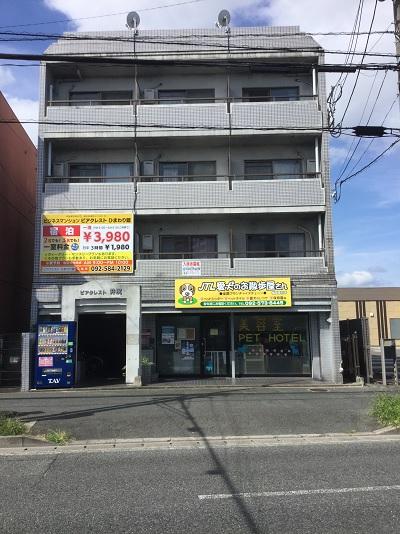 ビジネス マンション ピアクレスト ひまわり館の施設画像