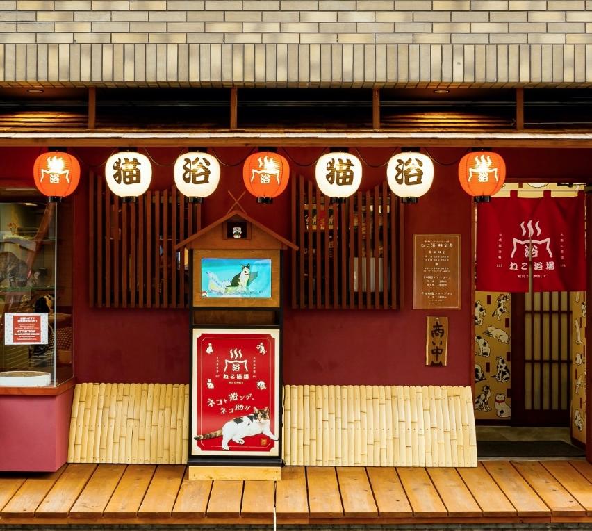 ねこ浴場&ねこ旅籠保護猫カフェネコリパブリック大阪...
