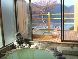 中禅寺温泉 ホテル湖上苑 画像