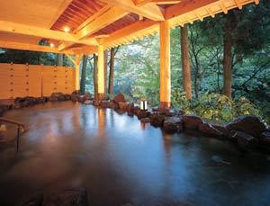 山中温泉 白鷺湯たわらや 画像