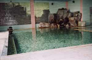 鹿教湯温泉 ホテル天竜閣 画像