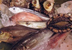 【夏だ!海水浴だ!】琴引浜に一番近いで! ★新鮮地魚料理で夏を満喫♪★  〜琴引会席〜