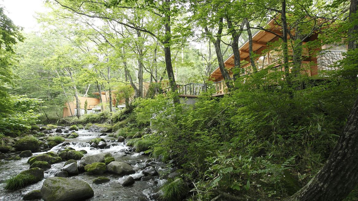 「蔵王の森」がつくる美と健康の温泉宿 ゆと森倶楽部 その1