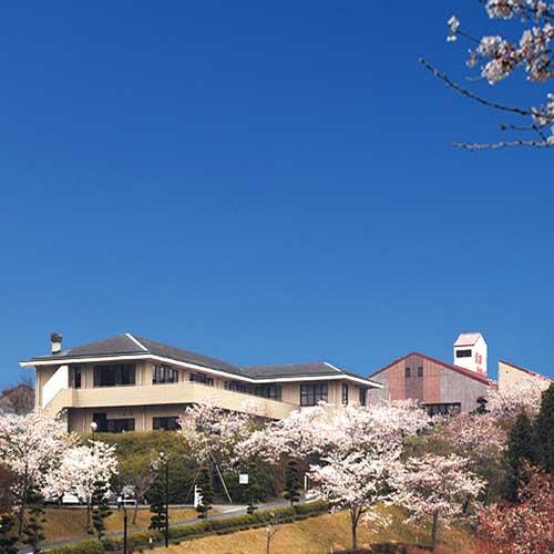 2食付き一万円以下、武雄温泉の格安おすすめ温泉旅館