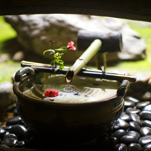 宮津温泉 料理旅館 茶六別館 画像