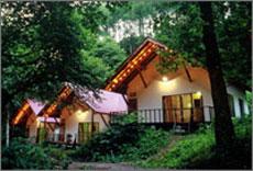 森の小さなリゾート村 桜清水コテージ