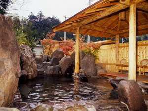 猿ヶ京温泉 ホテル生京園 画像