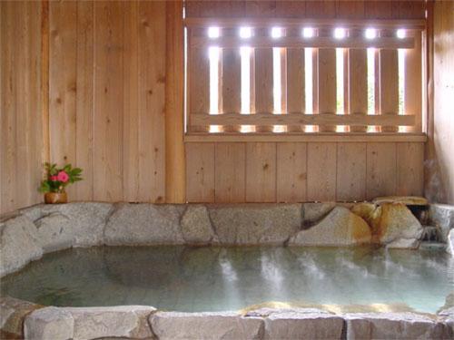 湯の峰温泉  湯の峯荘 画像