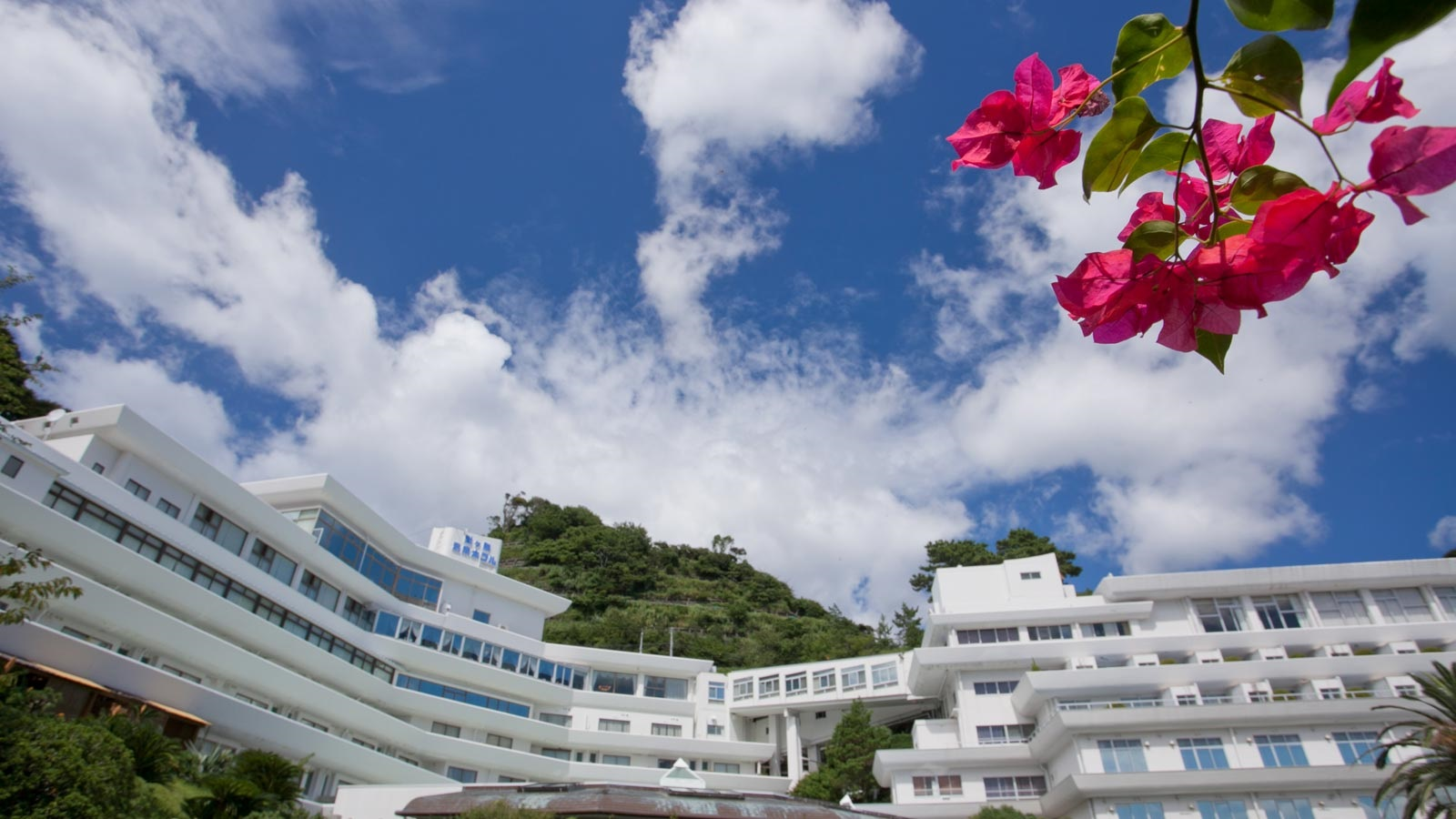 堂ヶ島唯一の自家源泉掛流宿 堂ヶ島温泉ホテル...