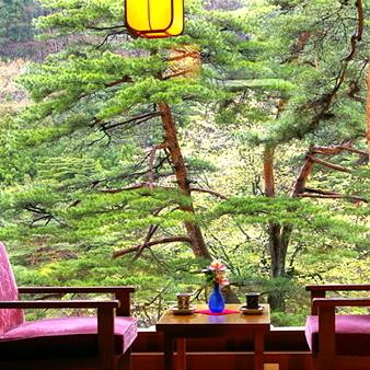 鬼怒川温泉 花の宿 松や 画像