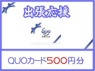 出張応援♪1日3室限定!QUOカード500付のプラン WIFI対応
