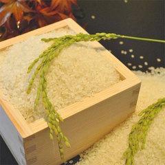 秋懐石【至福】〜常連様1番人気のスタンダード懐石プラン〜