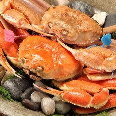 【冬】【地蟹満足プラン】タグ付き活松葉蟹をふたりで3杯焼き牡蠣付き◆お品書きは当日料理長とご相談