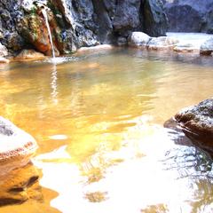 ●【レギュラー×2〜5連泊・和食膳】大自然の中の温泉宿でリフレッシュ