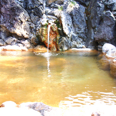 【レギュラー×2〜5連泊・和食膳】大自然の中の温泉宿でリフレッシュ