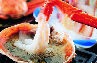 【はしうど蟹】◎吟味少量◎【お一人様一匹】《約800g》ブランド松葉蟹