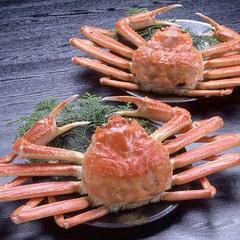<2020冬>■蟹(かに)フルコース■ちょっとふんぱつ茹でがにまたは但馬牛チョイス♪