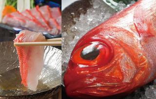 人気プラン!豪華三昧【1泊2食】鮑、伊勢海老、金目鯛&刺し盛り付