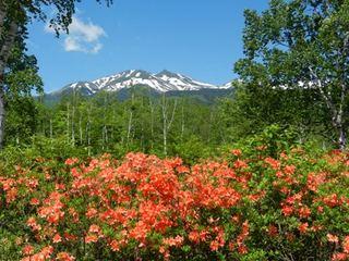 夏の信州 乗鞍高原、美味しいフレンチとゲストハウスでのんびりと 『信州プレミアム牛プラン』