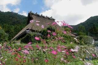 【当館人気】京都美山を堪能するならこのプラン♪夕食は里山会席料理!