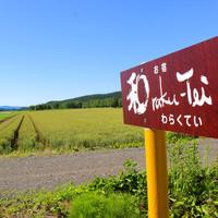 ≪夕朝食付≫北海道産食材を使用*日替わり夕食プラン【美味旬旅】
