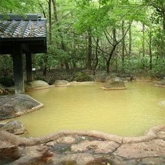【朝食付】最終イン21時!観光も温泉も♪欲張り九重旅行(¥6,480〜)
