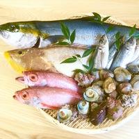 【プチ贅沢】山陰の天然鮮魚と国産和牛が味わえる◆ご褒美プラン◆(2食付き)