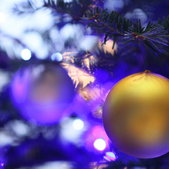 「ル・ミュゼ・ドゥ・アッシュ」のカップルケーキ&スパークリングワイン付き☆クリスマス宿泊プラン☆