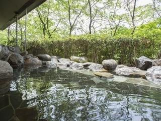 【大人気地酒が登場♪】栃木の地酒が12種類登場!日替わりでご案内♪お酒好きには必見です!♪