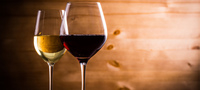 【分散型旅行を応援!】混雑を避けて優待プラン<国産ワインと半個室席へ優先案内の特典付>1日1組