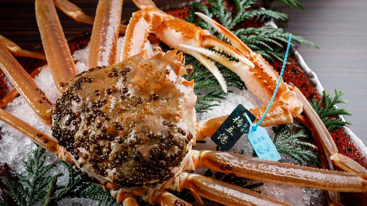 【タグ付き活蟹会席】加賀の至宝「橋立蟹」を堪能する活蟹会席