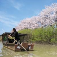 【お花見】『流し舟で楽しむお花見ツアー』と葉渡莉ご宿泊プラン・4/9開催