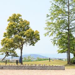 【シングル素泊まり】一人旅♪コンビニ2km圏内★全室無料Wi-Fi完備で便利!