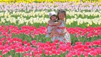 【春/定番】〜春得プラン〜お一人様最大3700円OFF!春のスタンダード会席<神戸からバス3時間>