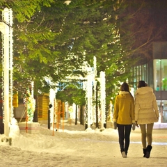 【シンプルステイ】【美味旬旅】[2食のみ]冬の北海道♪粉雪舞うスノーリゾート★未就学児【添い寝無料】