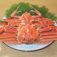 【2食付】お食事は通常よりも豪華に♪カニやアワビをはじめ、海の幸をたっぷりと<たつみプラン>