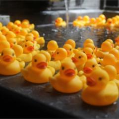 【貸切風呂で200羽のアヒルちゃんがお出迎え♪】家族み〜んなで温泉満喫♪ファミリー応援特典!