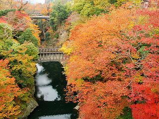 秋のお出かけプラン2019秋★オプションでぶどう狩りや紅葉観光もおススメ♪一人旅もOK