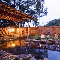 4名様以上で≪6千円お得≫1日1室★約100平米の特別室利用◎お子様歓迎◆天然温泉【バイキング】