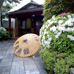 【50歳以上】温泉×こだわり料理!大人の鳥取旅行♪特典付き≪お部屋食≫冬得