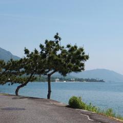 迷ったらコレ!月替わり会席を堪能☆琵琶湖の目の前で過ごす休日♪