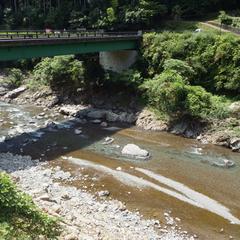 【素泊まり】日本三美人湯で湯ったり・・・♪食事は自由に★気ままプラン
