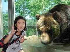 【2食付】バスに乗ってクマさんに会いに行こうプラン【美味旬旅】