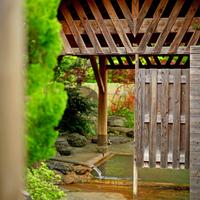 【竹コース/グレードアッププラン】季節のお食事+アワビのお刺身付き!【2食付】