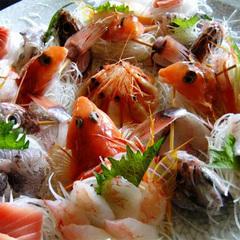 【中浜屋スタンダードプラン】土肥と駿河湾の獲れたて新鮮!地魚刺身盛り♪