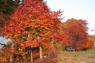 蔵王の紅葉は中庭テラスから見られ、雲海と夕陽と星空、山形和牛フルコース料理と自家焙煎珈琲豆プレゼント