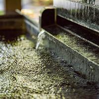 【ご馳走をもう一品】源泉温泉で蒸し上げたアワビ付きグルメプラン