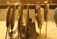 囲炉裏(いろり)で焼いたヤマメの塩焼きや黒毛和牛プラン!