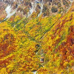 ◆選べるメイン『秋のきのこ鍋』+お惣菜バイキング/自慢のお蕎麦付【2食付】